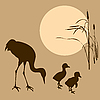 Vector clipart:  of the crane with nestling on su
