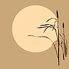 Vector clipart: bulrush on brown