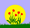 Vector clipart:  tulip against sun