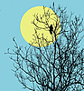 Vector clipart:  ravens sitting on tree against sun