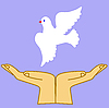 Vector clipart:  of the dove in hand