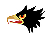 Vector clipart:  drawing head of the ravenous bird