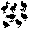 Векторный клипарт: фоне силуэта птенец
