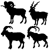 Vector clipart:  silhouette mountain ram