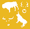 Vector clipart:  oxen on yellow