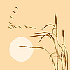 Vector clipart: geese flock on bulrush