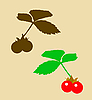 Vector clipart:  drawing of the berry bramble