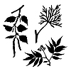 Vector clipart:  silhouettes of the timber plants