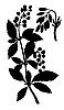 Vector clipart:  silhouette of the barberry