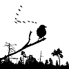 Vector clipart:  of the bird on branch