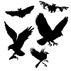 Vector clipart: birds and bats