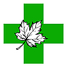 Vector clipart: maple leaf on green cross