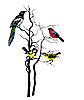silhouette of the birds on tree