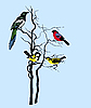 Vector clipart: silhouette of the birds on tree