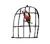 Векторный клипарт: Попугай в клетке