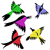 Vector clipart: drawing of the decorative birds