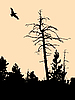 Vector clipart: silhouette of old dry tree