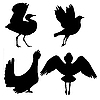 Vector clipart: silhouettes of the birds