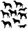 Vector clipart: silhouettes of hunt dogs