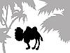 Векторный клипарт: силуэт верблюда