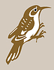 Vector clipart: nuthatch silhouette