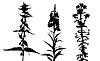 Векторный клипарт: цветы силуэта