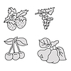 Vector clipart: berries and fruits