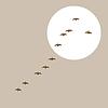 Vector clipart: flying ducks silhouette