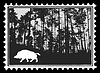 silhouette of the wild boar in forest