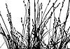 Векторный клипарт: трава силуэт,