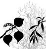Векторный клипарт: растения силуэт,
