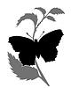 Векторный клипарт: бабочка силуэт,