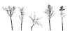 Векторный клипарт: набор дерево силуэт,