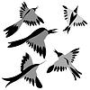 Векторный клипарт: декоративных птиц illustratio