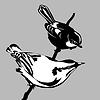 Векторный клипарт: силуэт птицы