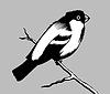 Птица силуэт
