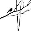 Векторный клипарт: Птица силуэт на лесной отрасли,