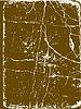 Vector clipart: decorative rifts