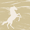 Vector clipart: horse silhouette on grunge background,