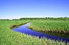 그린 필드에 푸른 강 | Stock Foto