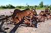 Photo 300 DPI: old agricultural mechanisms