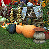 Фото 300 DPI: набор овощи на сельский рынок