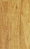 Hevea wood texture | Stock Foto