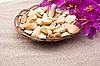 해변에 꽃과 돌 | Stock Foto