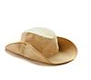 棕色牛仔帽 | 免版税照片