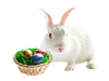 Photo 300 DPI: Colorful easter eggs and rabbit