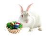 五颜六色的复活节彩蛋和兔子 | 免版税照片