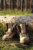 Фото 300 DPI: Туризм сапоги на поляне в сосновом лесу