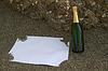 空白明信片和香槟酒瓶 | 免版税照片