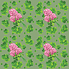 Vector clipart: Green background with clover